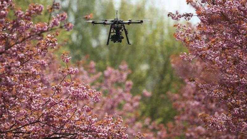 Teknologi Drone Swarm, Drone Dengan Body Kecil Namun Berbahaya